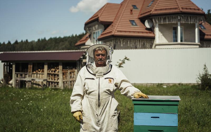 Муравьи, шершни, ежи, дятлы и другие враги пчел