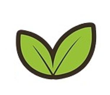 Cеть студий красоты Eco beuty