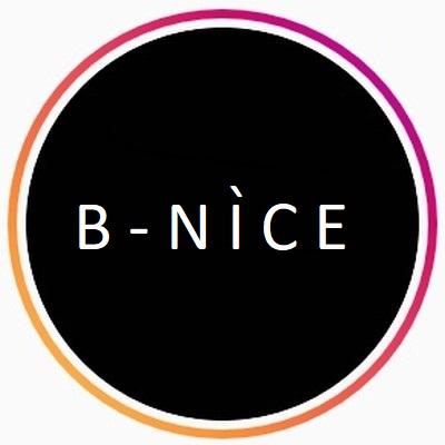 B-Nice LLC